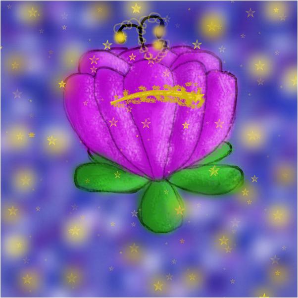Stargazing Water-Lily