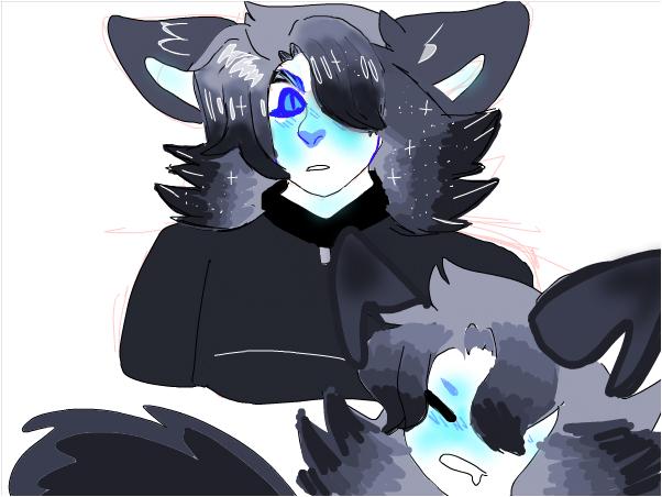 wolf [new oc]
