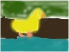 Ducky