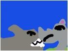 animal face off shark vs rhino
