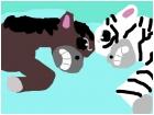 Wild horse vs Zebra
