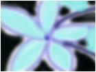 I <3 Flowers