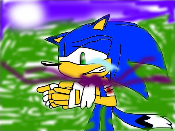 sonic to werehog