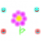 the beauty flower