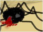 spider death