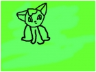 kitt the kat