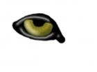 Wolf's Eye