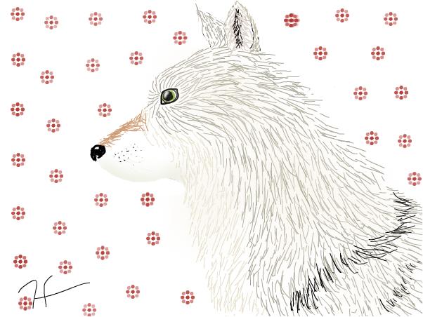 Sandy Wolf