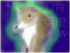 katethealpha wolf