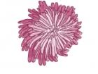 unfinished pink pom flower