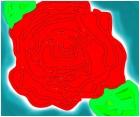 a rose 4 u