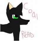 Coal READ