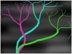 Plasma Trees