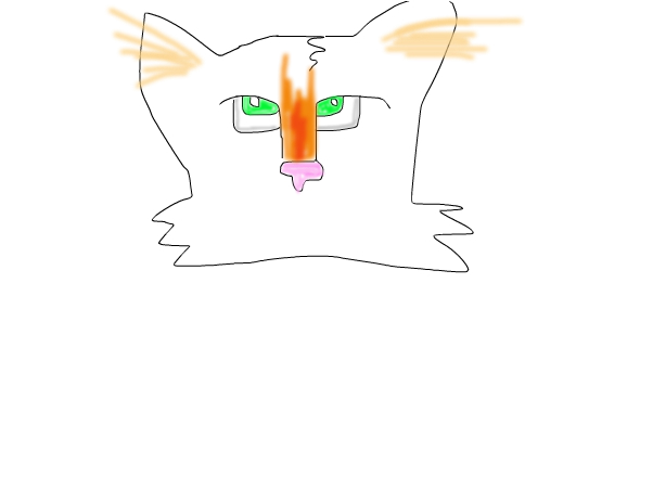 Unfinished Kitty