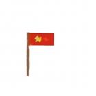 The Vietnam Flag