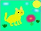 Gato Amarillo!
