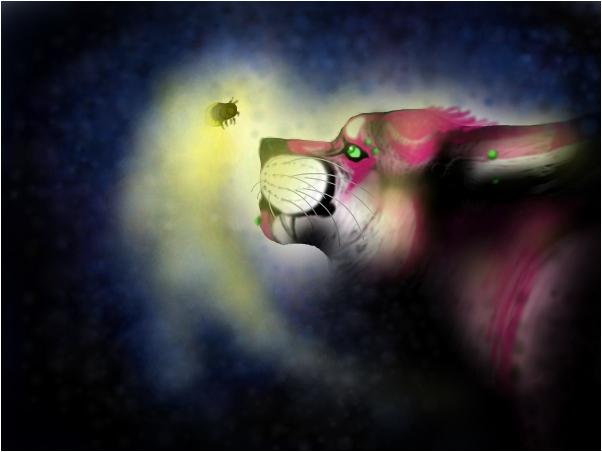 cat in light