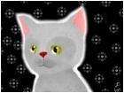kiwi! (nickname of cat)