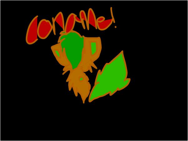 Coname?