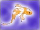 A Goldfish!