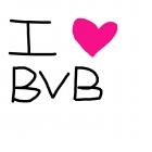 i <3 BVB