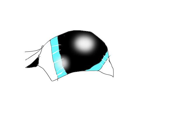 my, eye