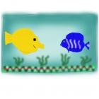 Fish in a fishtank