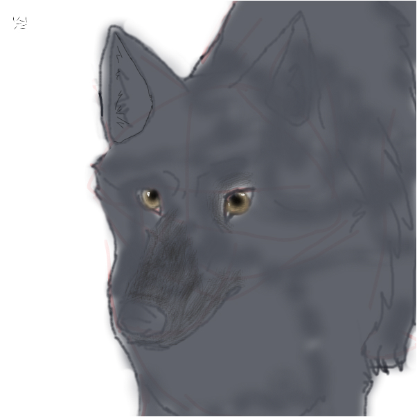 Unfinished Wolf