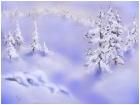 frost sene