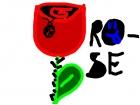 rose :P