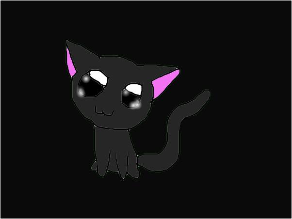 Boo the kitten
