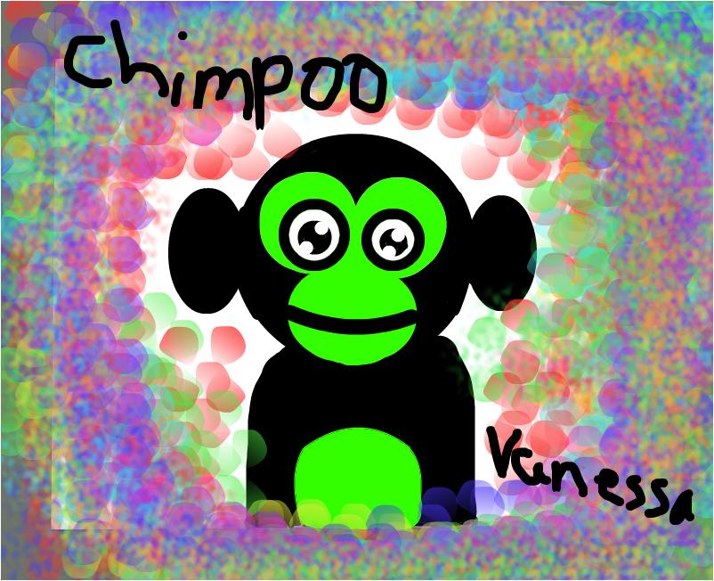 chimpoo
