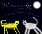 striped cheetah meets wolf under a starlit stars