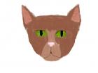 Cat again