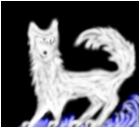Wolf speed