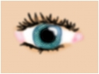 Request 4 shebs eye