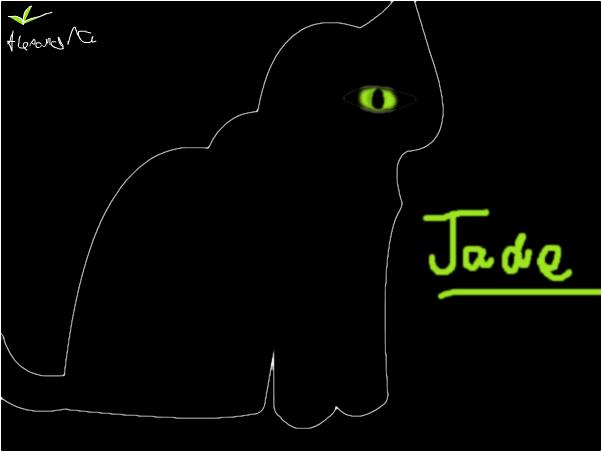 My Cat Jade