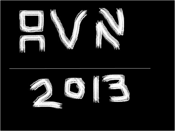 avn2013