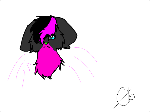ima on and new file and 'look' :3 ~Birdy