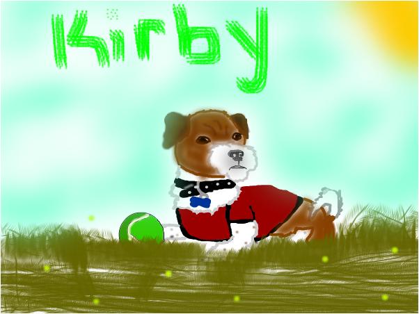 my dog kirby