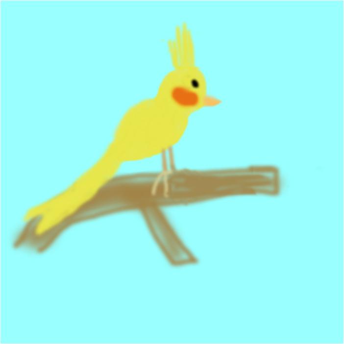 My Bird Twittie