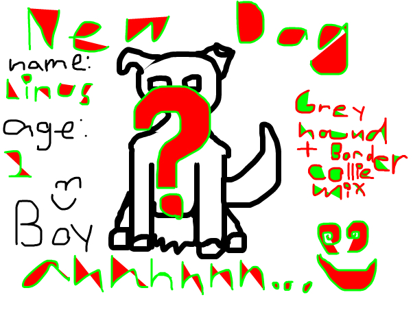 NEW DOG~Kailani