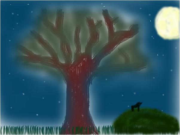 Full Moon Starry Night