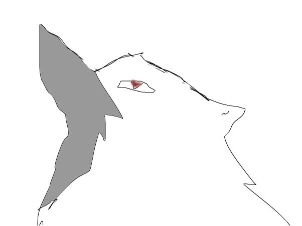 ask resercher wolf (read)