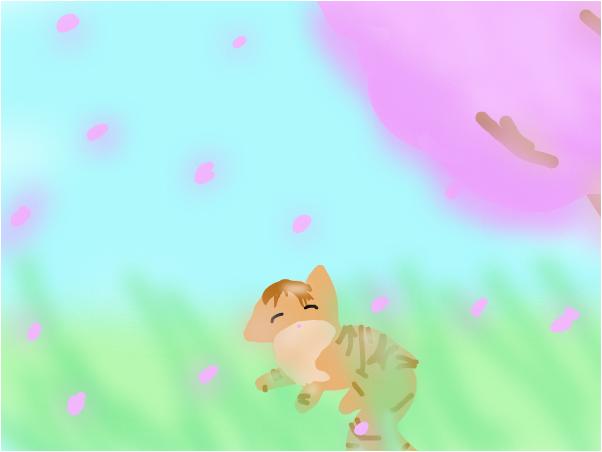 Misae's Cat