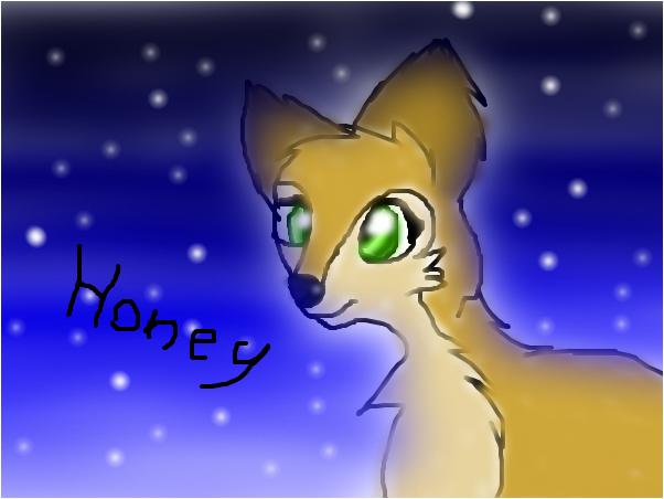 Honey (My pup)