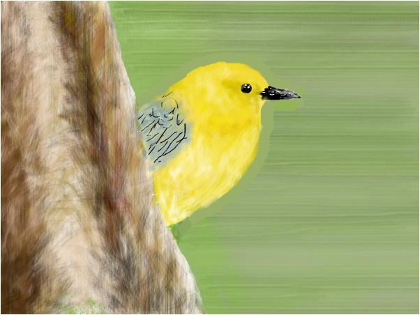 The golden swamp bird