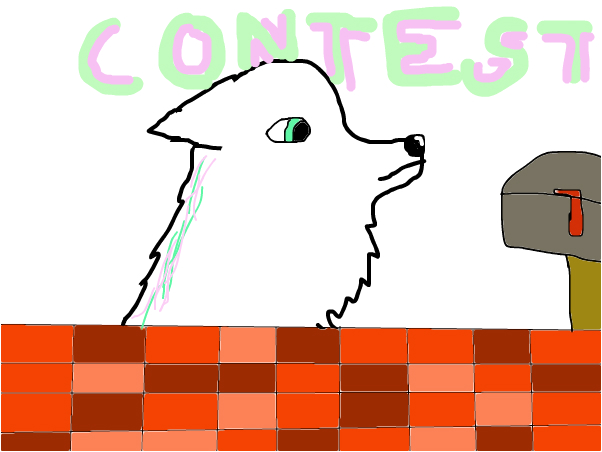 CONTEST(read disc.)