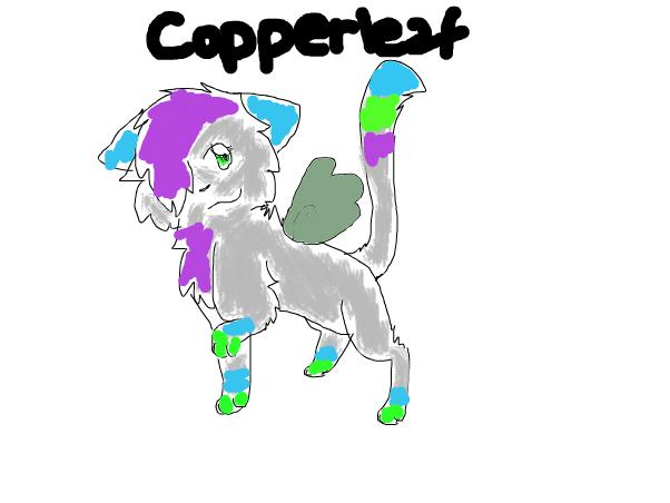 Copperleaf's Design