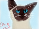 Siam kitty